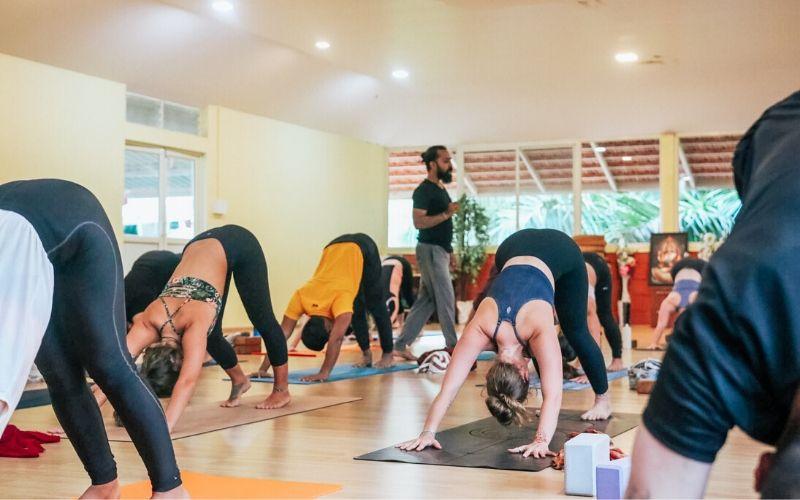 Vinyasa-Yoga-Klasse in der Yogalehrer-Ausbildung